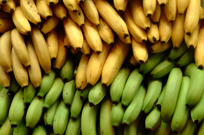 banany właściwości