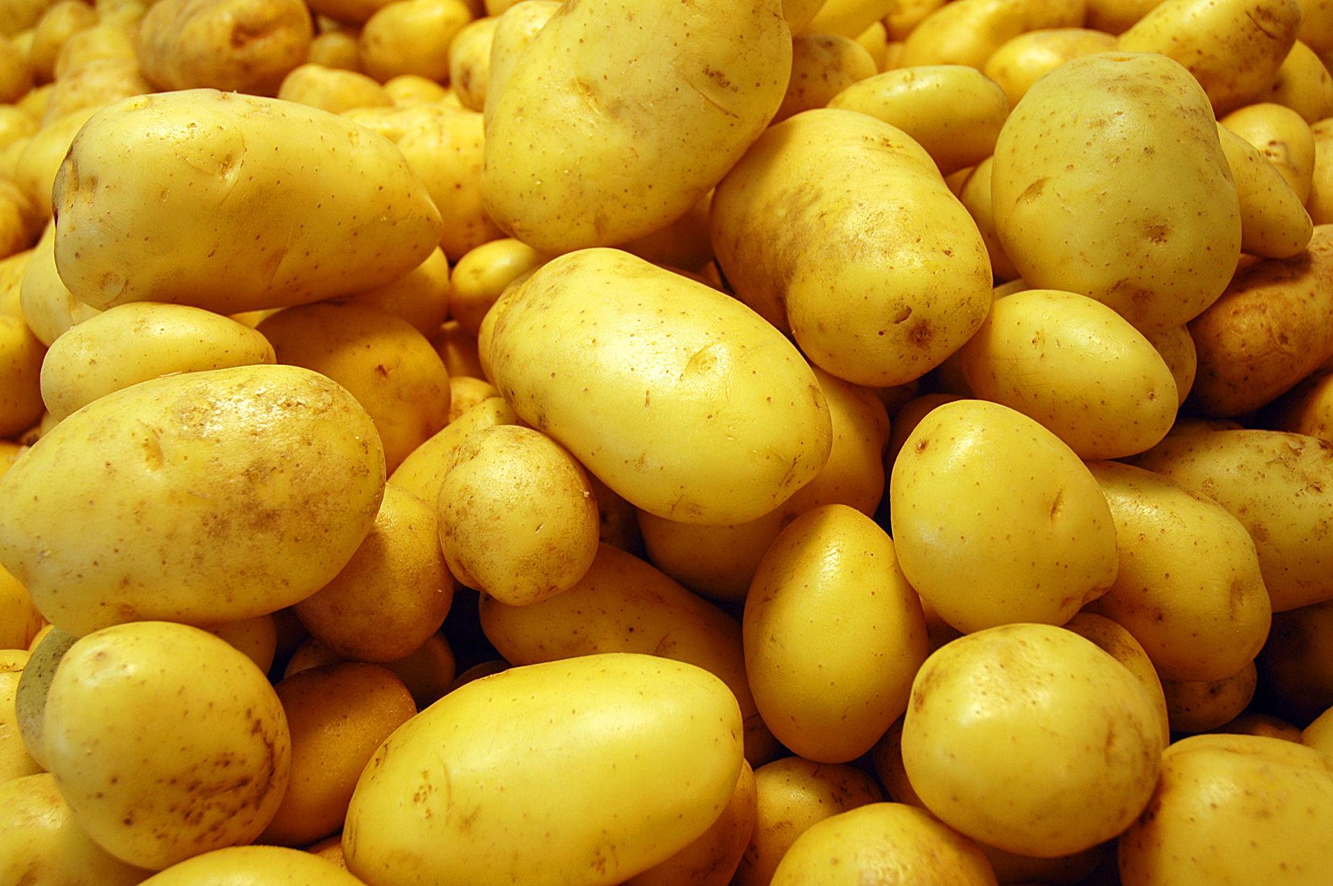 Czy ziemniaki są tuczące