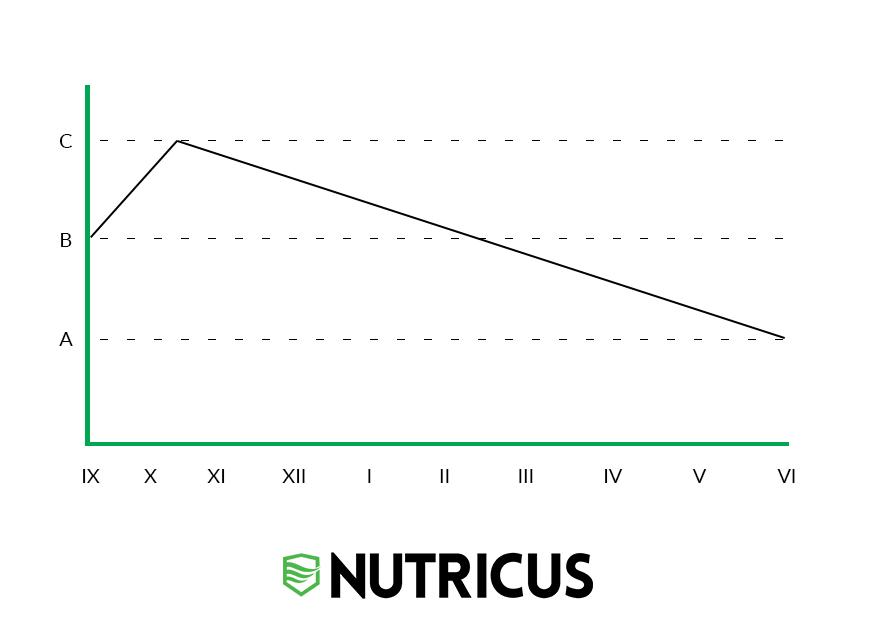 waga startowa w triathlonie i wykres pokazujący jak ją osiągnąć