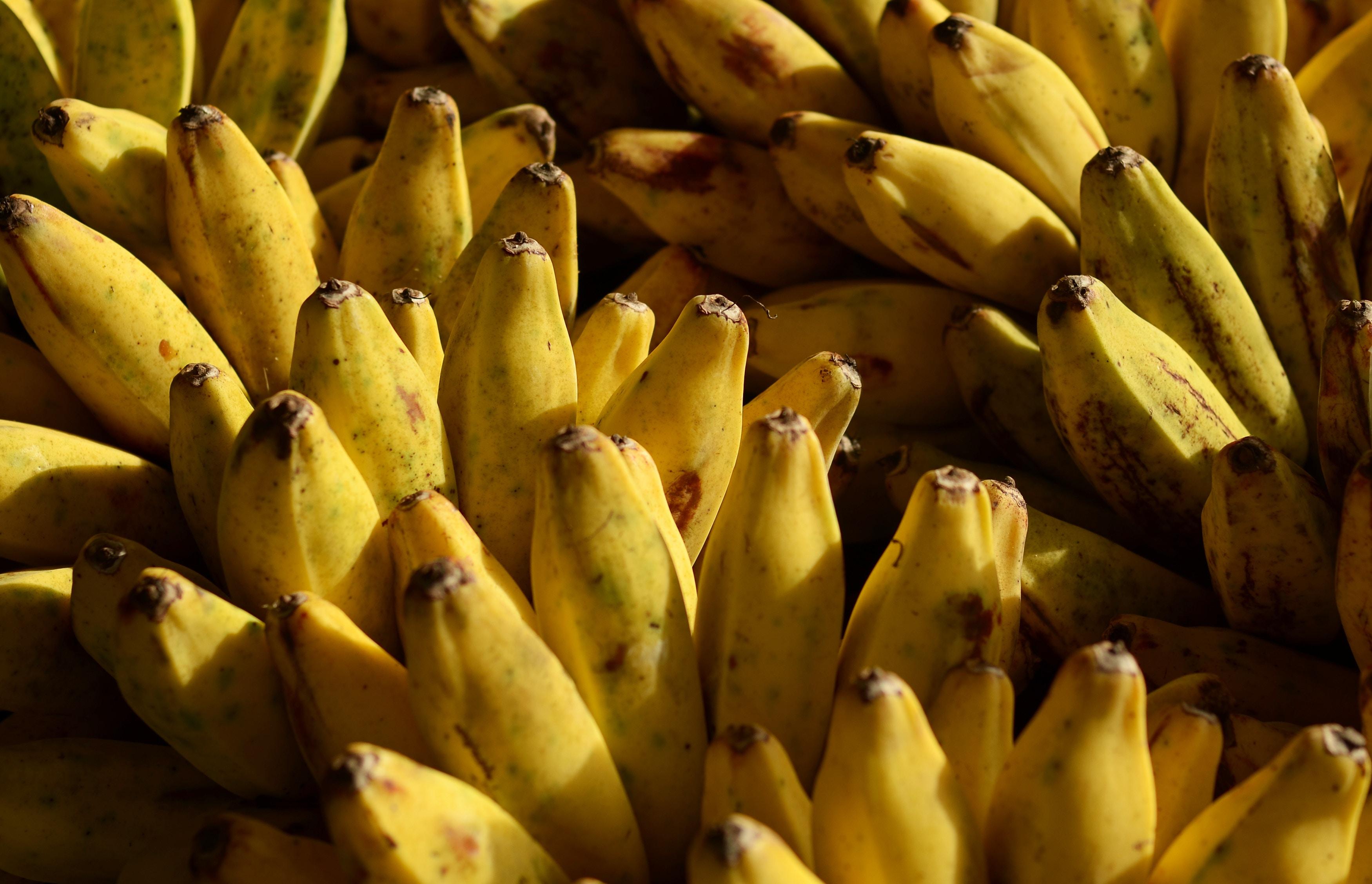 czarna końcówka banana